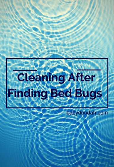 Cleaning After Finding Bed Bugs