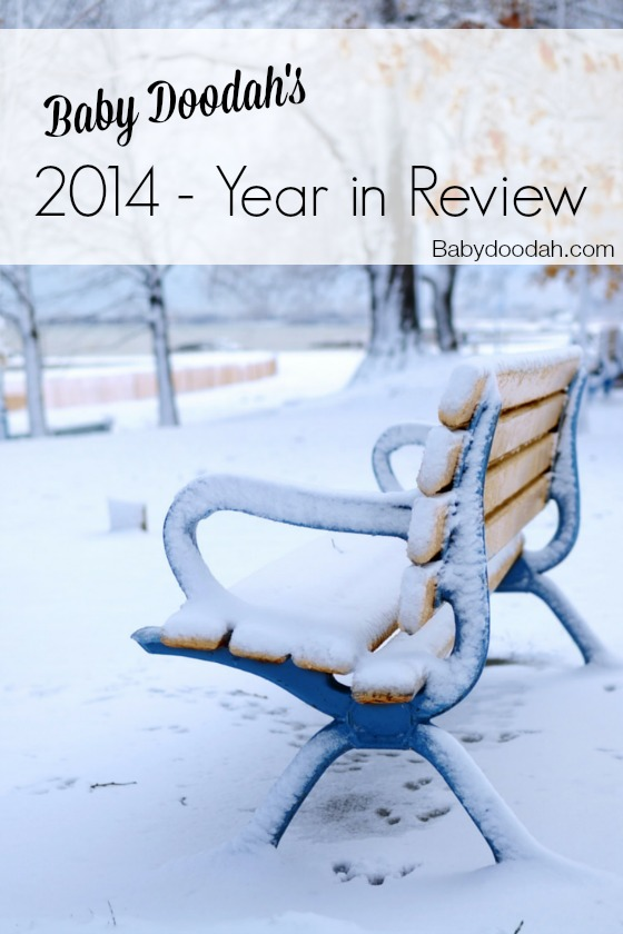 2014 Year in Review - Baby Doodah