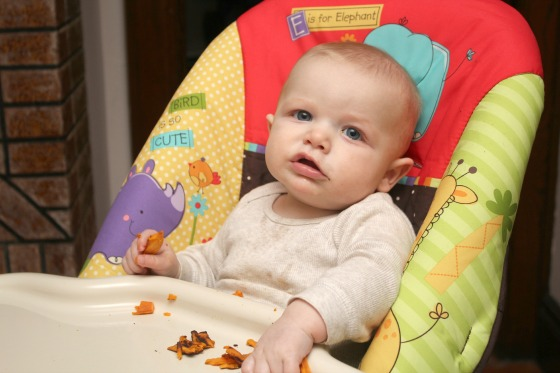 Why You Should Follow Baby Led Weaning - Baby Doodah(1)