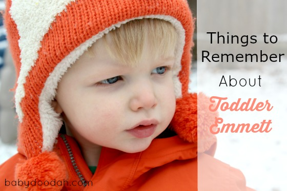 Things to Remember About Toddler Emmett - Baby Doodah