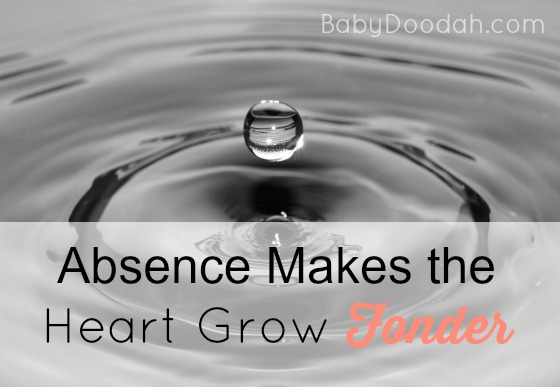Absence Makes the Heart Grow Fonder - Baby Doodah