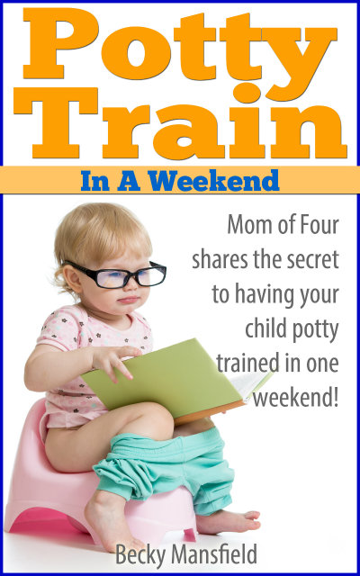 potty train in a weekend ebook COVER
